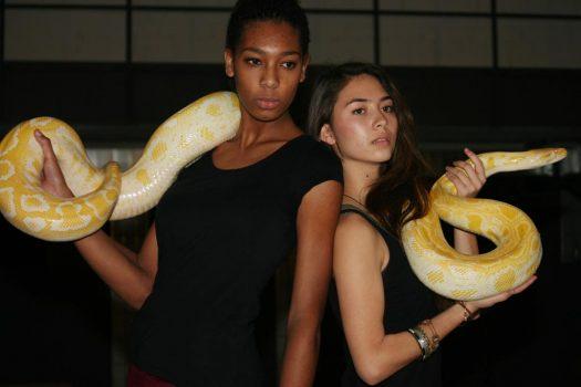 Zwei Frauen und eine Schlange